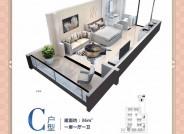 C户型36 平米1室1厅1卫1阳台1厨